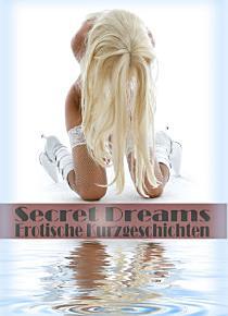 Secret Dreams   Erotische Kurzgeschichten PDF