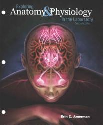 Exploring Anatomy PDF