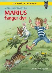 Marius midtimellem: Marius fanger dyr