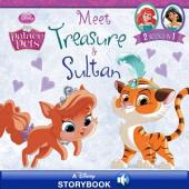 Palace Pets: Meet Treasure and Sultan: A Disney Read-Along! | 2 Books in 1!