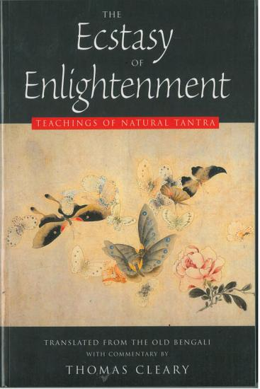 The Ecstasy of Enlightenment PDF