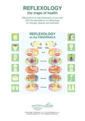 REFLEXOLOGY on the FINGERNAILS: REFLEXOLOGY - the maps of health