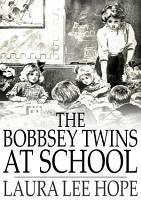 The Bobbsey Twins at School PDF