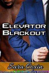 Elevator Blackout (Interracial Black MM/White M Gay Erotica)