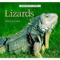 Lizards PDF