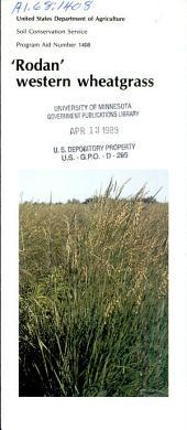 'Rodan' western wheatgrass