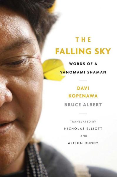 Download The Falling Sky Book