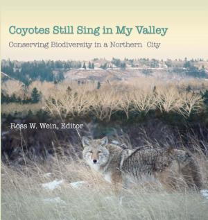 Coyotes Still Sing in My Valley