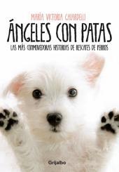 Ángeles con patas: Las más conmovedoras historias de rescates de perros