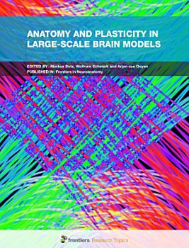 Anatomy and Plasticity in Large Scale Brain Models PDF