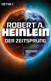 Der Zeitsprung: Roman