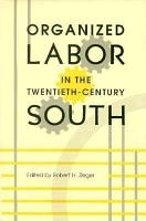 Organized Labor in the Twentieth century South PDF