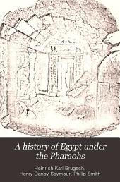 A History of Egypt Under the Pharaohs: Derived Entirely from the Monuments, to which is Added a Discourse on the Exodus of the Israelites, Volume 2