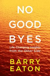 No Goodbyes: Life-Changing Insights from the Other Side