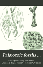 Palæozoic Fossils ...: The fossils of the Galena-Trenton and Black river formations of lake Winnipeg and its vicinity, by J.F. Whiteaves. 1897