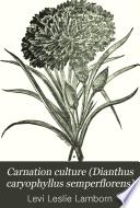 Carnation Culture (Dianthus Caryophyllus Semperflorens)
