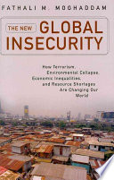 The New Global Insecurity