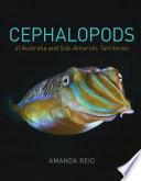 Cephalopods of Australia and Sub Antarctic Territories