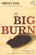The Big Burn [Pdf/ePub] eBook