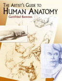 """""""The Artist's Guide to Human Anatomy"""" by Gottfried Bammes"""