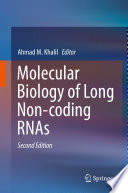 Molecular Biology of Long Non coding RNAs Book