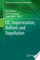 CO2 Sequestration  Biofuels and Depollution