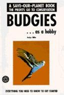 Budgies as a Hobby