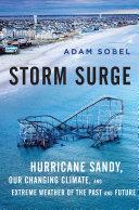 Storm Surge Pdf/ePub eBook