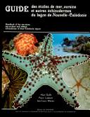 Guide des   toiles de mer  oursins et autres   chinodermes du lagon de Nouvelle Cal  donie