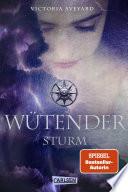 Wütender Sturm (Die Farben des Blutes 4)