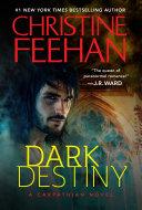 Dark Destiny ebook