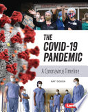 The COVID 19 Pandemic