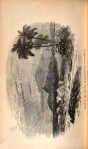 Страница 426