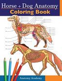 Horse   Dog Anatomy Coloring Book