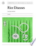 Rice Diseases