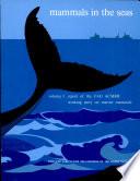 Mammals In The Seas