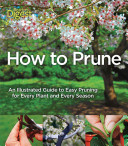 Pdf How to Prune