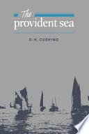 The Provident Sea