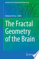 The Fractal Geometry of the Brain