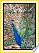 Just Feathers  vol  1 Book