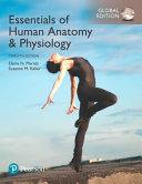 Essentials of Human Anatomy   Physiology  Global Edition Book