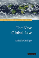 The New Global Law - Seite 41