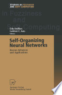 Self Organizing Neural Networks