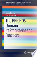 The BRICHOS Domain