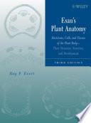 Esau's Plant Anatomy