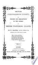 British Phænogamous Botany;