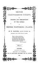 British Ph  nogamous Botany