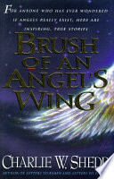 Brush of an Angel's Wing