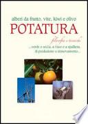Potatura: filosofia e tecniche. Alberi da frutto, vite, kiwi e olivo - Verde e natura