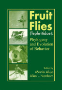 Fruit Flies  Tephritidae